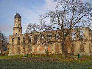 Ruiny zamku w Strzelcach Opolskich.jpeg
