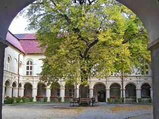 Zamek w Krapkowicach.jpeg