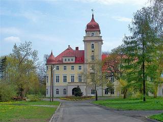 Pałac w Dąbrówce Górnej.jpeg