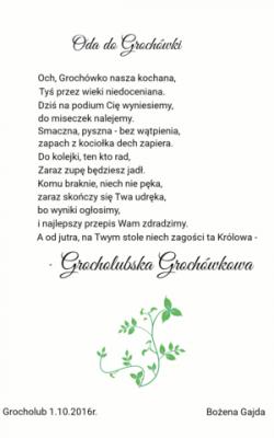 Oda do Grochówki.png