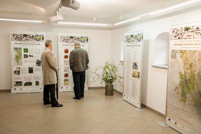 Wystawa lokalnych zasobów w Leśnicy
