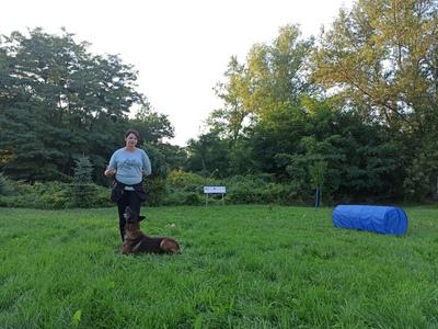 Galeria Pies i ja - bezpieczna przyjaźń