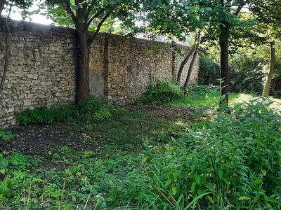 Galeria Kamień Śl 1