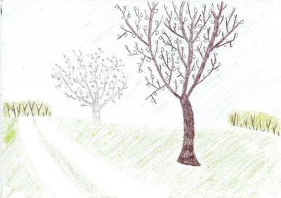 Dominika Więcek - Droga na stawy